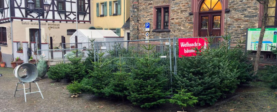 Weihnachtsbaumverkauf Oberwesel